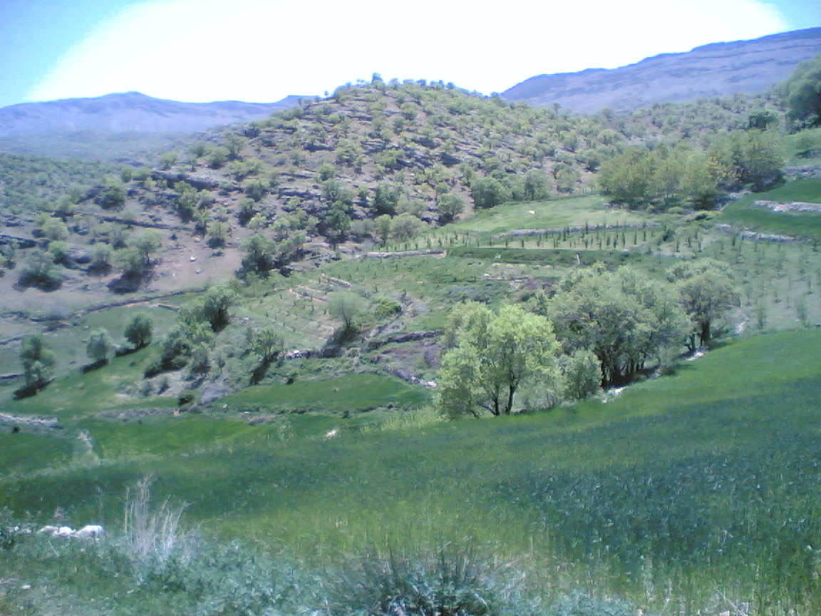 Around Jiderzar village