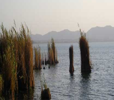 iran_fars_arjan_lake