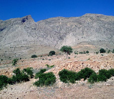 iran_shiraz_derak_mountain