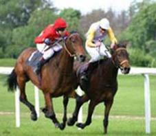 iran_horse_riding