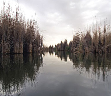 iran_fars_parishan_lake