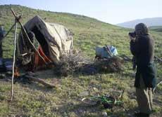 iran,fars,nomads