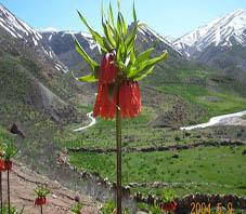 Iran, Shahrekord